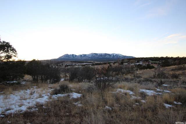 Address Not Published, Monticello, UT 84535 (MLS #1720276) :: Lookout Real Estate Group