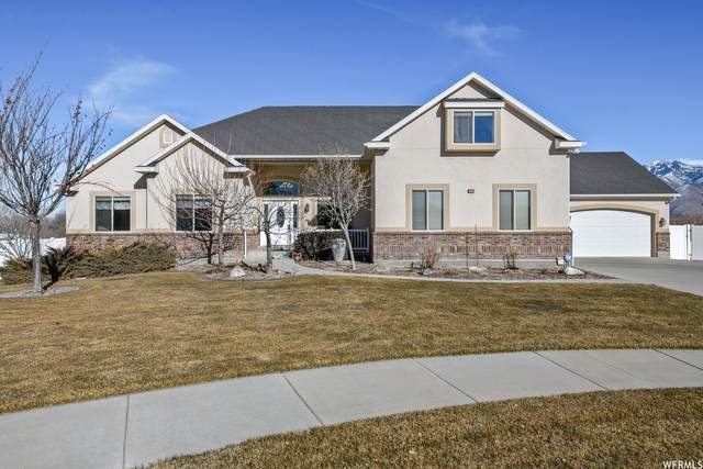 13551 S Moose Cir W, Riverton, UT 84065 (#1720335) :: The Fields Team