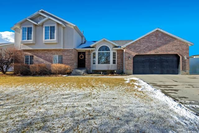 12018 S Doves Landing Dr, Riverton, UT 84065 (#1720448) :: Utah Dream Properties