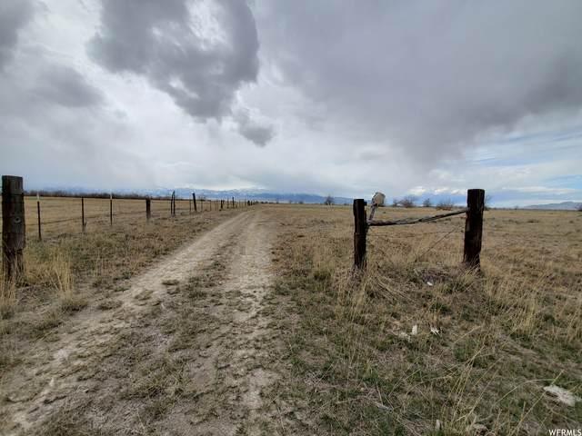 Address Not Published, Erda, UT 84074 (#1720937) :: Utah Best Real Estate Team | Century 21 Everest