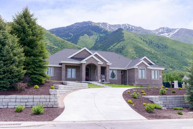 2563 E 700 S, Springville, UT 84663 (#1720964) :: Livingstone Brokers