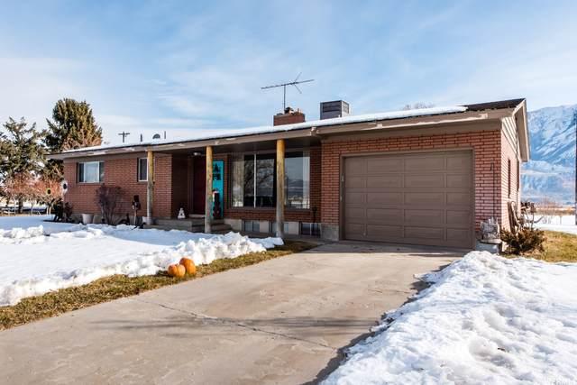 4613 W 10800 N, Tremonton, UT 84337 (#1721201) :: Big Key Real Estate
