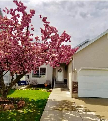 584 E Thatcher Way, Midvale, UT 84047 (#1721240) :: Berkshire Hathaway HomeServices Elite Real Estate