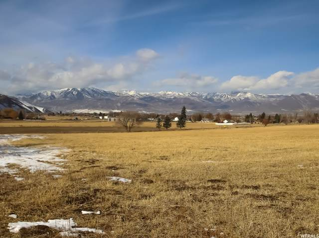 3600 S Duke Ln E, Heber City, UT 84032 (MLS #1721288) :: High Country Properties