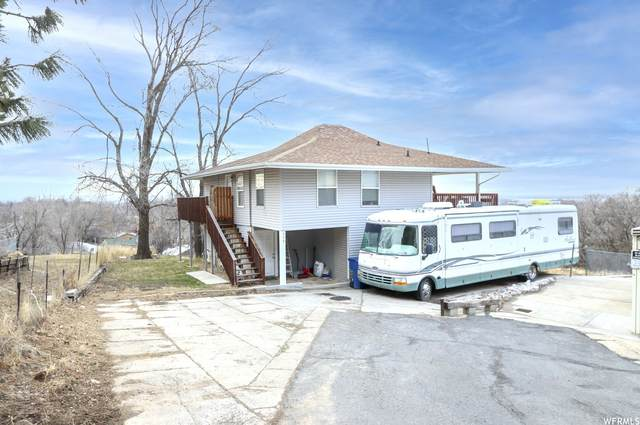 239 N Polk Ave, Ogden, UT 84404 (#1721365) :: Villamentor