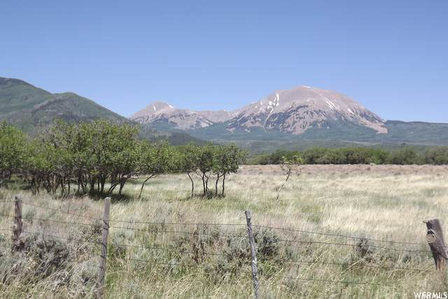 329 Deer Haven Park Rd, La Sal, UT 84530 (MLS #1721380) :: Lookout Real Estate Group