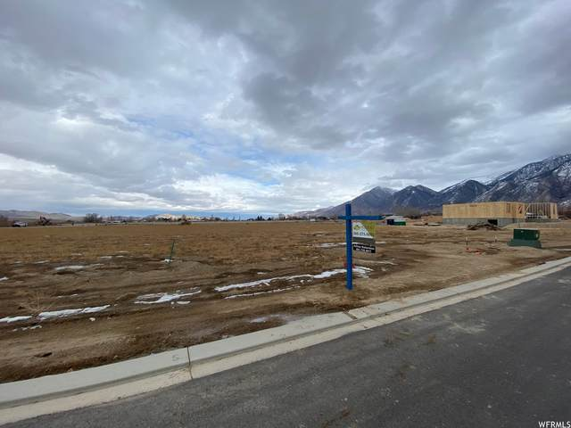 378 W 700 S #19, Mona, UT 84645 (MLS #1721488) :: Lawson Real Estate Team - Engel & Völkers