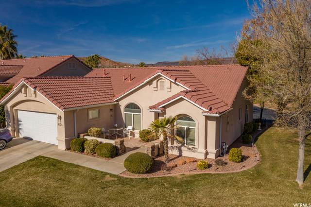 834 Whiptail Way, Washington, UT 84780 (#1721558) :: Big Key Real Estate