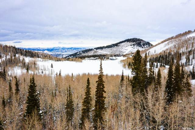 270 White Pine Rd, Park City, UT 84060 (#1722504) :: goBE Realty