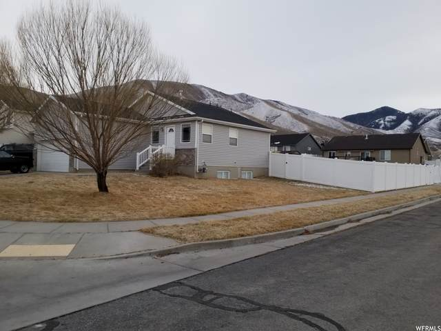 961 W 1140 S, Tooele, UT 84074 (#1723170) :: Berkshire Hathaway HomeServices Elite Real Estate
