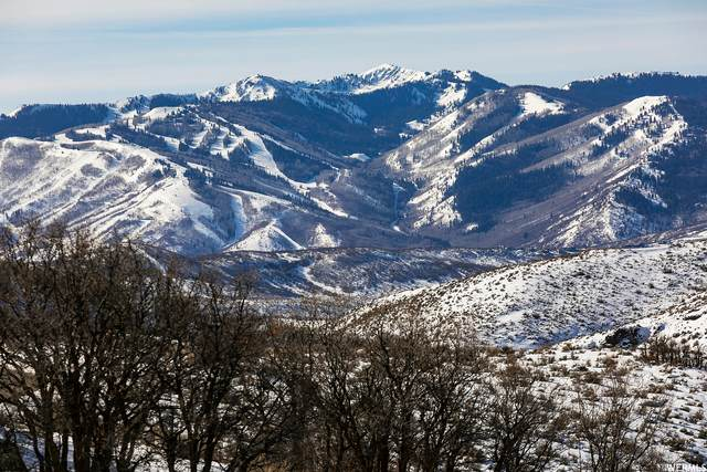 557 E Canyon Gate Rd #70, Park City, UT 84098 (MLS #1723862) :: Summit Sotheby's International Realty