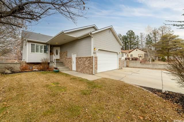 1087 E 7800 S, Midvale, UT 84047 (#1724479) :: Utah Dream Properties