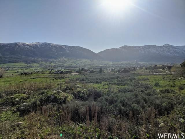 5786 N Porcupine Ridge Dr E #91, Eden, UT 84310 (MLS #1724557) :: Summit Sotheby's International Realty