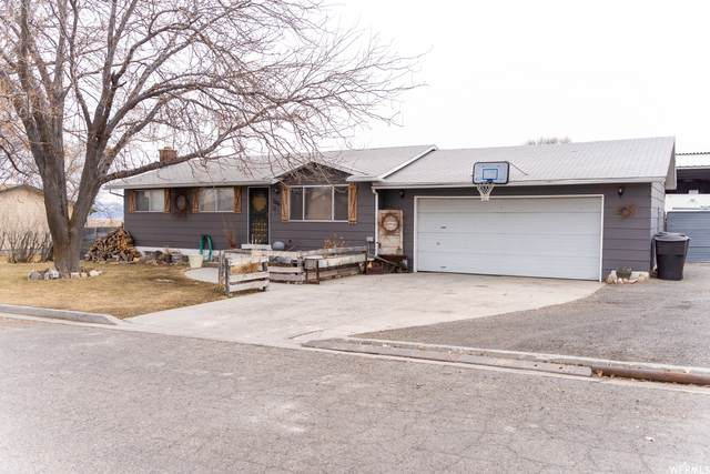 11555 W 10350 N, Thatcher, UT 84337 (#1724589) :: Colemere Realty Associates