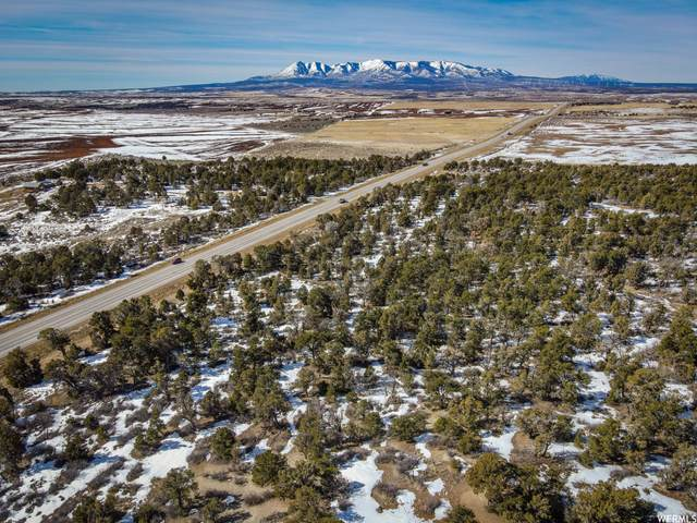 350 Cr And Highway 491, Monticello, UT 84535 (MLS #1724593) :: Summit Sotheby's International Realty