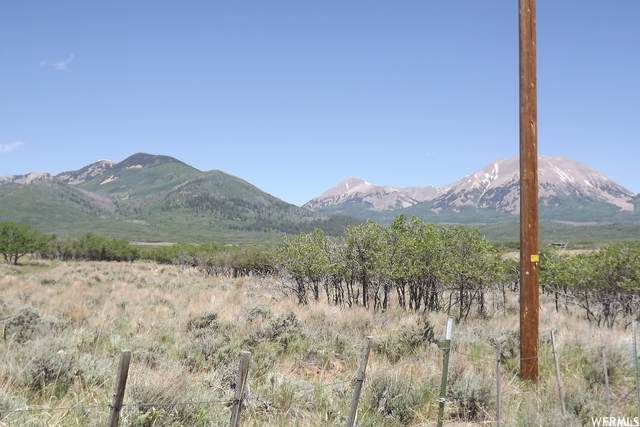 29 Ranger Station Rd, La Sal, UT 84530 (MLS #1724802) :: Summit Sotheby's International Realty