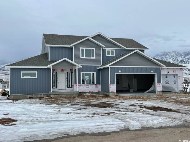 561 S Canyon Dr, Franklin, ID 83237 (#1724820) :: Utah Dream Properties