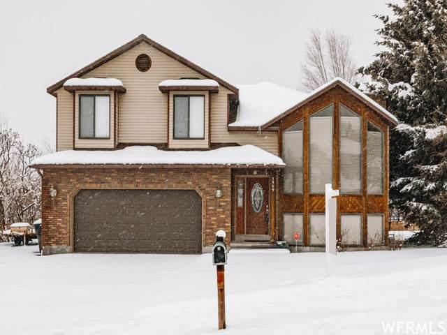 3969 N 500 W, Pleasant View, UT 84414 (#1725216) :: Bustos Real Estate | Keller Williams Utah Realtors