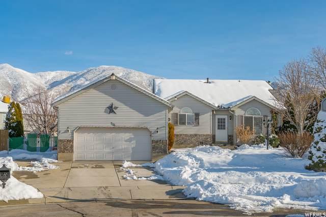 776 N 800 E, Tooele, UT 84074 (MLS #1725525) :: Lawson Real Estate Team - Engel & Völkers