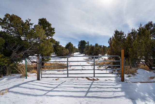 Address Not Published, Duchesne, UT 84021 (#1726165) :: The Perry Group