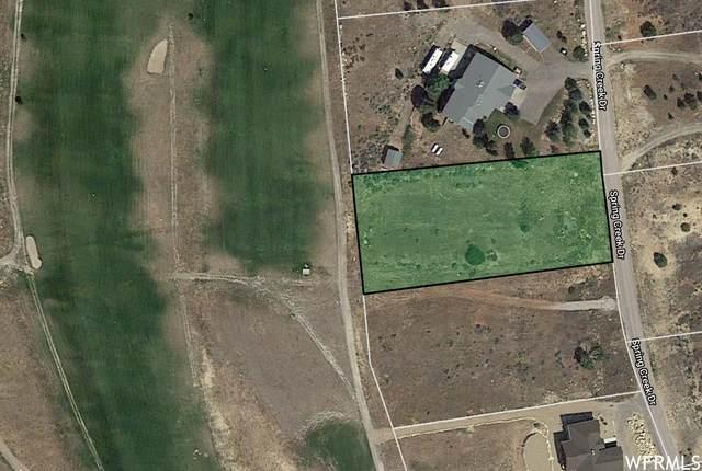 22575 N Spring Creek Dr E B-10, Fairview, UT 84629 (#1726412) :: C4 Real Estate Team