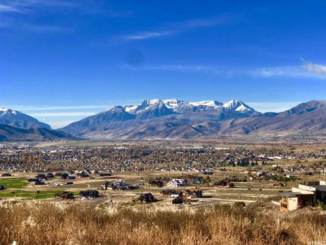1417 N Gold Mountain Cir #467, Heber City, UT 84032 (MLS #1727243) :: High Country Properties