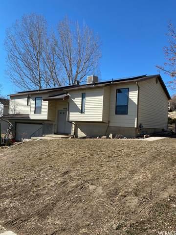 4028 W Juniper Rd N, Cedar Hills, UT 84062 (#1727256) :: Utah Dream Properties