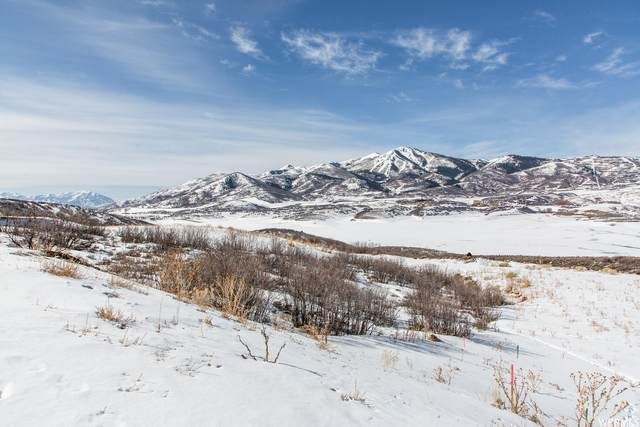 10887 N Reflection Ln, Heber City, UT 84032 (#1727610) :: Colemere Realty Associates
