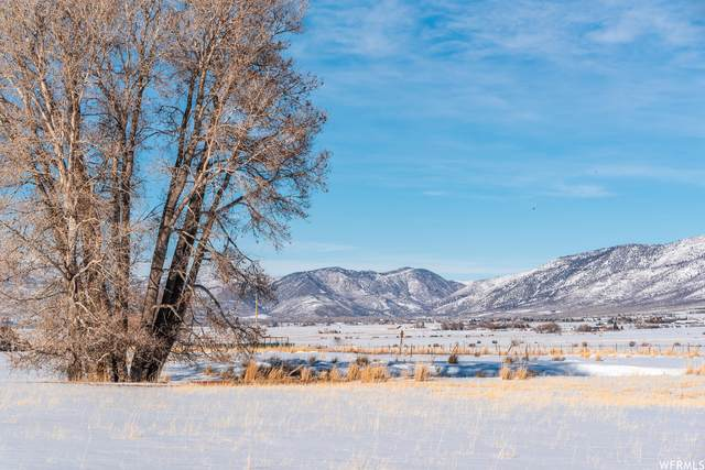 Address Not Published, Kamas, UT 84036 (#1727920) :: Colemere Realty Associates