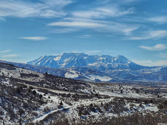 7463 E Oakview Dr #1478, Heber City, UT 84032 (MLS #1727967) :: High Country Properties