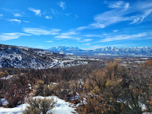 7407 E Oakview Dr #1476, Heber City, UT 84032 (MLS #1727968) :: High Country Properties