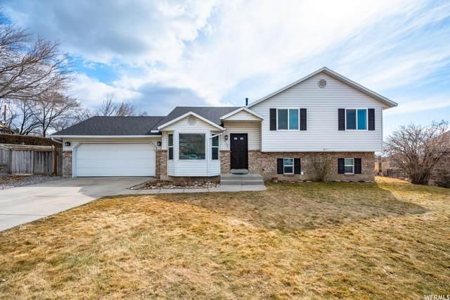 938 E Orchard, Pleasant Grove, UT 84062 (#1727971) :: Utah Dream Properties