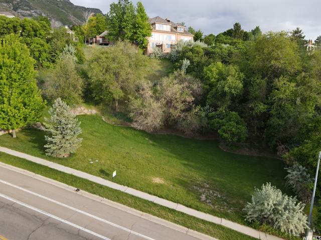 4591 N Foothill Dr, Provo, UT 84604 (#1728693) :: Berkshire Hathaway HomeServices Elite Real Estate