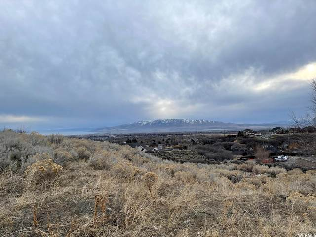 10249 N Bayhill Dr #3, Cedar Hills, UT 84062 (MLS #1728783) :: Lookout Real Estate Group