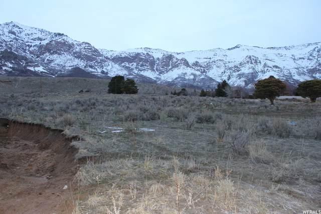 Address Not Published, North Ogden, UT 84414 (#1729200) :: Utah Dream Properties