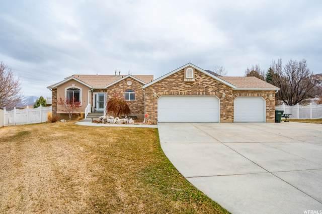 517 S Lacey Ct, Tooele, UT 84074 (#1729277) :: Big Key Real Estate