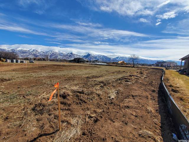 1651 W 75 S, Kaysville, UT 84037 (#1729510) :: Doxey Real Estate Group