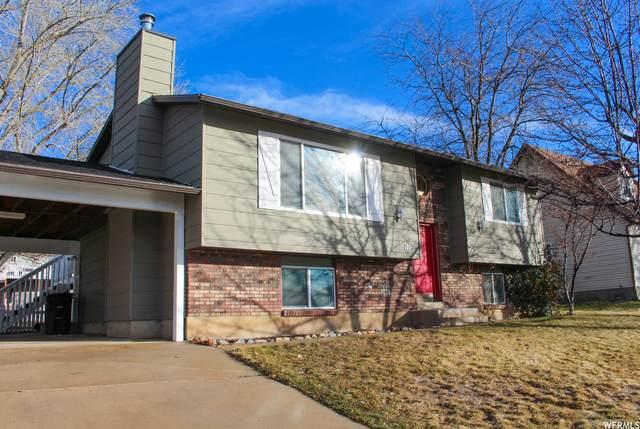 1799 S 300 E, Springville, UT 84663 (MLS #1729568) :: Lookout Real Estate Group