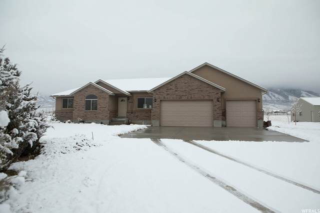 1842 N Mountain Air Ln E, Tooele, UT 84074 (MLS #1729715) :: Lookout Real Estate Group