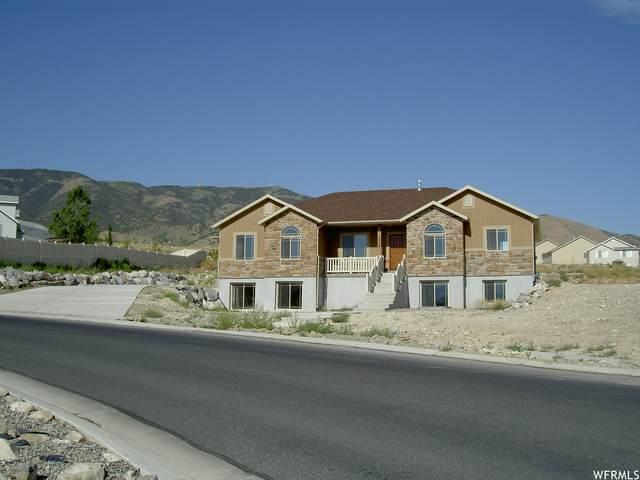 3509 S Lake Mountain Dr, Saratoga Springs, UT 84045 (MLS #1730004) :: Lookout Real Estate Group