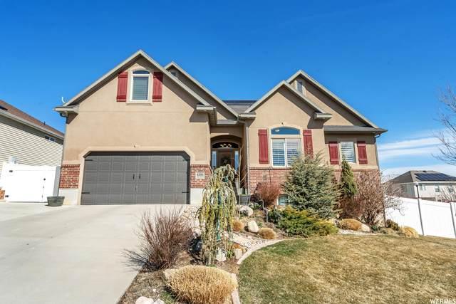 6306 W Cedar Hill Rd, West Jordan, UT 84081 (MLS #1730192) :: Lookout Real Estate Group
