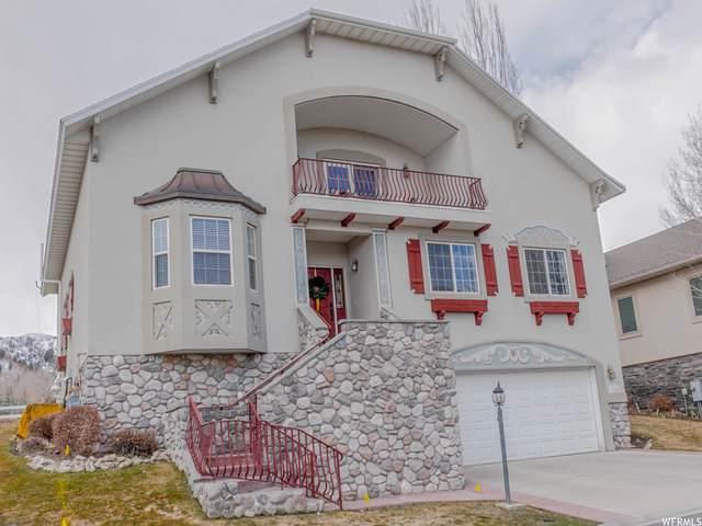 1161 N Warm Springs Rd, Midway, UT 84049 (MLS #1730523) :: Lookout Real Estate Group