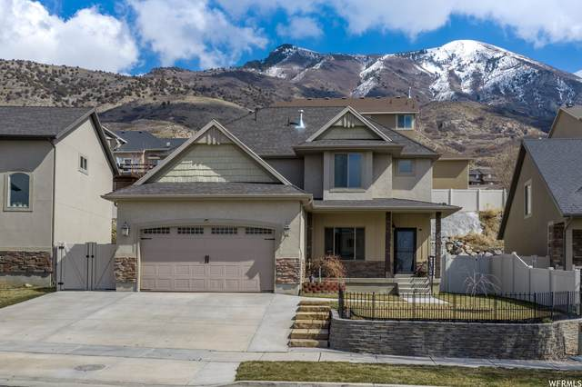 10376 N Tamarack Way, Cedar Hills, UT 84062 (MLS #1730885) :: Lookout Real Estate Group