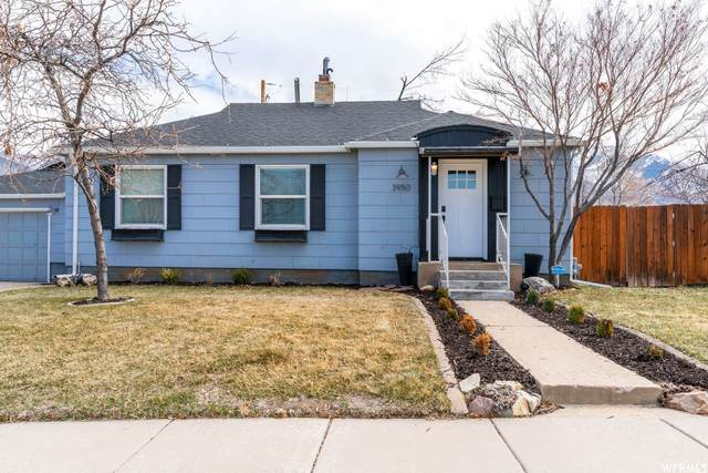 3950 Nordin Ave, Ogden, UT 84403 (#1731139) :: Exit Realty Success