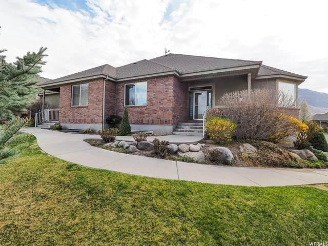 9587 N 4500 W, Cedar Hills, UT 84062 (#1731492) :: Berkshire Hathaway HomeServices Elite Real Estate