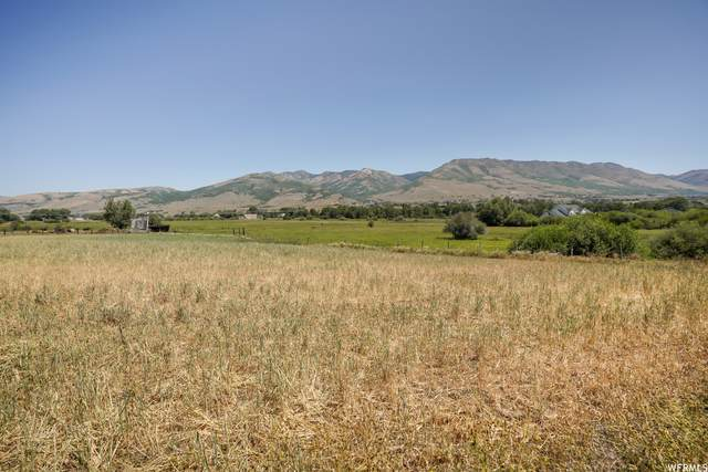 3280 N Highway 162 #1, Eden, UT 84310 (MLS #1731670) :: Summit Sotheby's International Realty