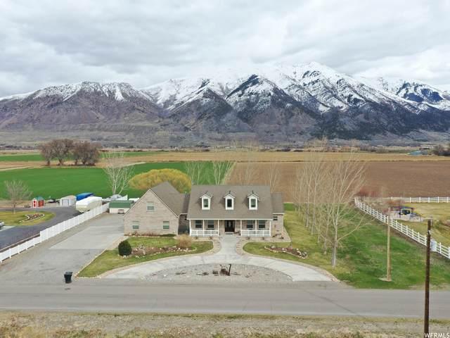 10320 N 4400 W, Elwood, UT 84337 (#1732031) :: Bustos Real Estate | Keller Williams Utah Realtors