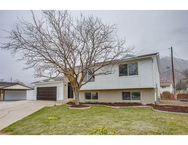 564 E 750 N, Ogden, UT 84404 (#1732050) :: Doxey Real Estate Group