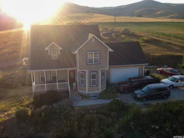 3205 Ovid Rd, Bern, ID 83220 (#1732385) :: The Perry Group