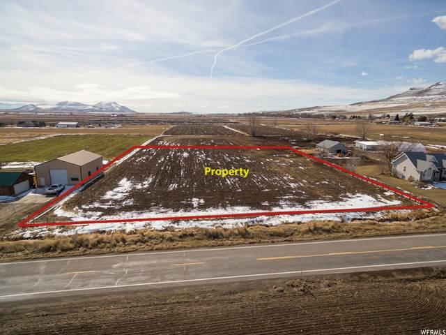 11375 W 10400 N, Tremonton, UT 84337 (MLS #1732525) :: Lookout Real Estate Group